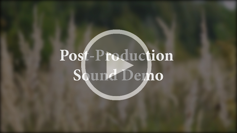 A screenshot of the thumbnail of the video that says 'Post-Production Sound Demo'.